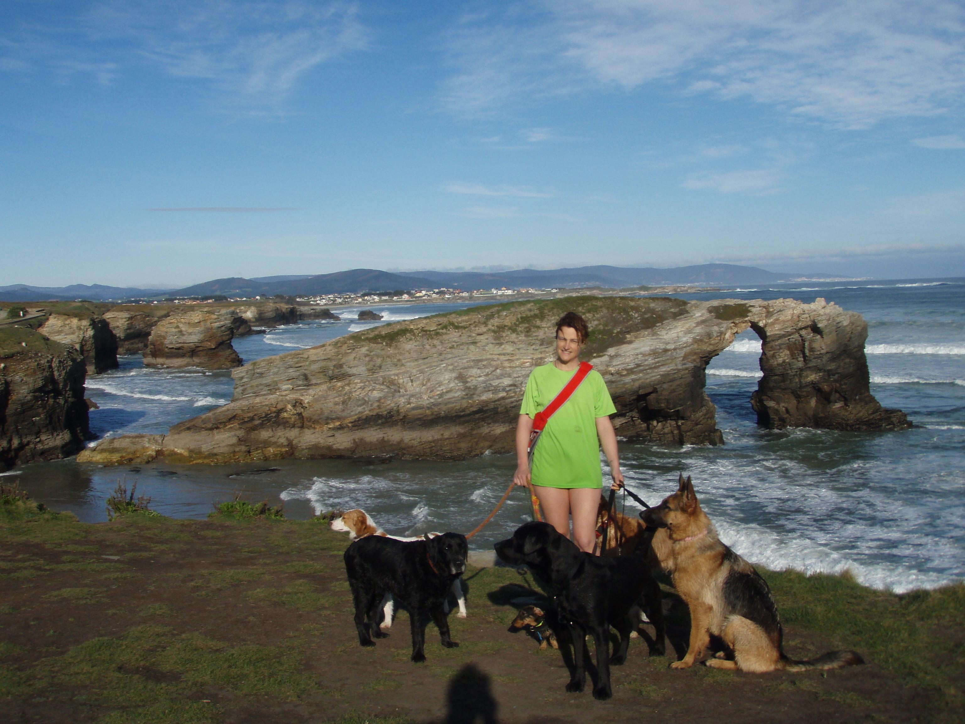 playa de las catedrales perros