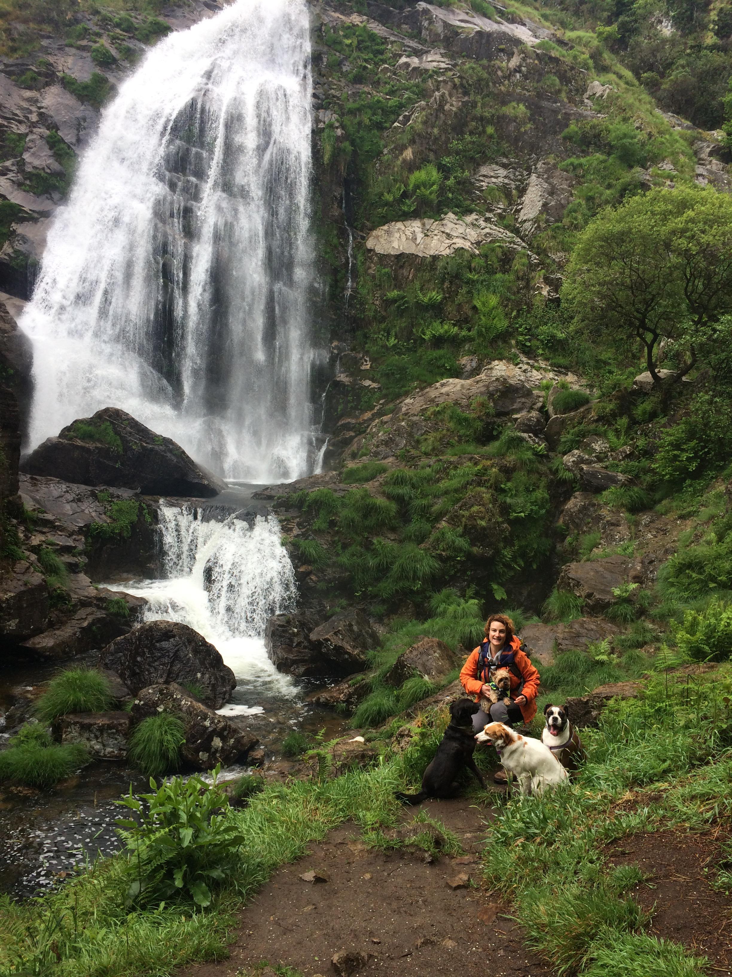 Campamento Perruno En La Impresionante Naturaleza De Las Rías Altas